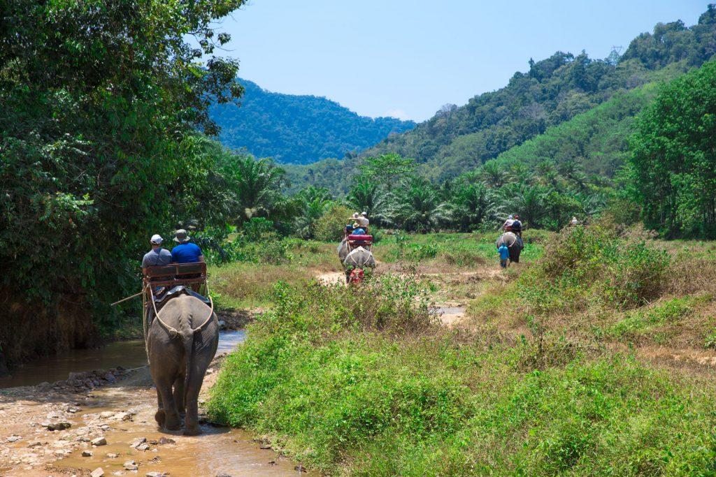 นุักท่องเที่ยวกำลังขี่ช้างชมวิวที่หัวหิน