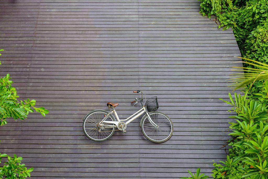 ปั่นจักรยานเที่ยวบางกระเจ้า